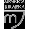 Znaczek logo PSP oksyda